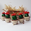 Thumbnail: Cactus type Echinocereus fleur rouge