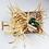 Thumbnail: Cactus Echinopsis