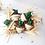 Thumbnail: Cactus Cereus fleur blanche