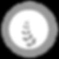 bhumi-logo-white-shadow_Prancheta 1.png