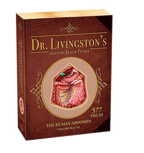 Dr. Livingston's Anatomy Jigsaw Puzzle: The Human Abdomen