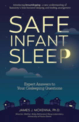 Cover of Safe Infant Sleep