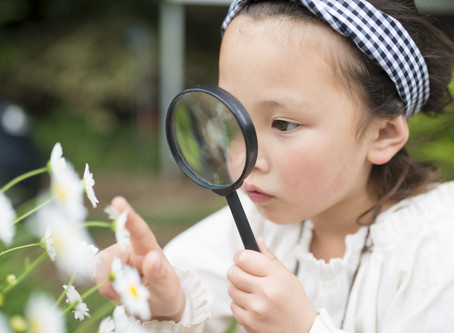 Benefits of Early STEM Education