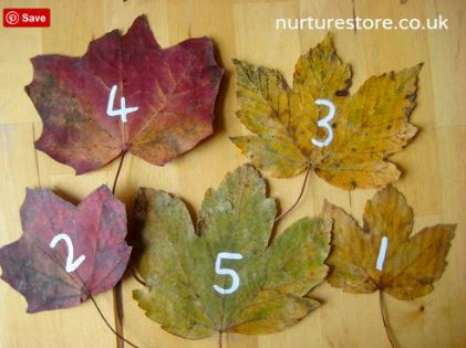 science naturally STEM math fall activities parents children autumn fun