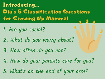 Dia's Classification Questions.png