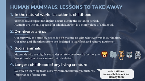 Human Mammals Lessons to Take Away.png