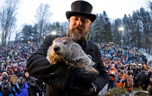 Punxsutawney Phil groundhog day science naturally weather predictions STEM animals animal behavior
