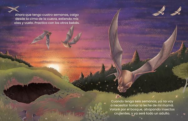 BatsSpread.jpg