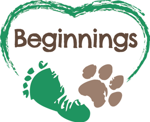 platypus media beginnings collection science animals mammal young children learning