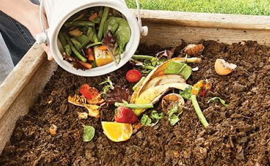 International composting week compost environment worm farm kids activities education recycling
