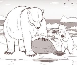 international polar bear day science naturally mammals facts STEM science