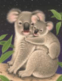 Koala English.png