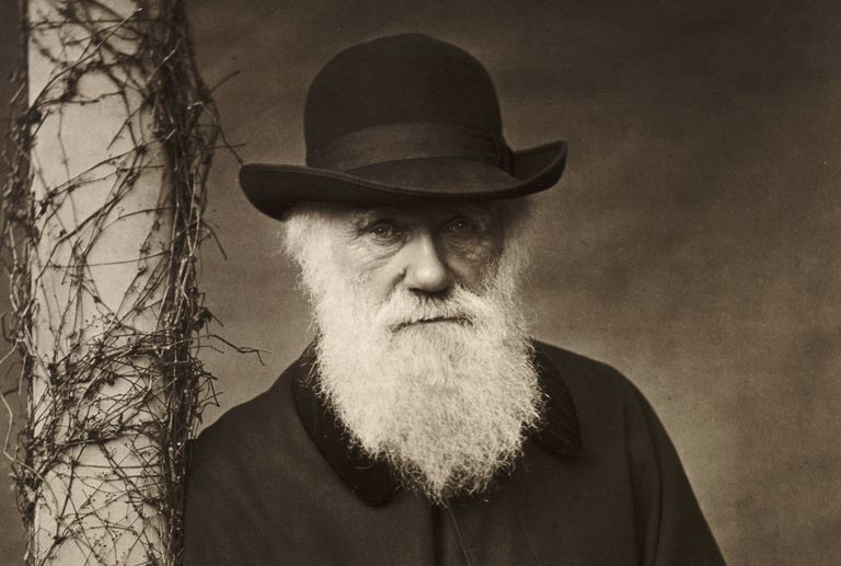 Charles Darwin International Darwin Day Science Naturally evolution reading young children