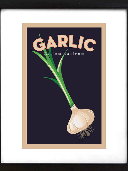 "Framed 11 x 14"" Garlic"