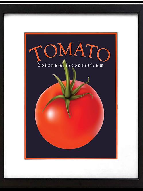 """Framed 11 x 14"""" Tomato Print"""