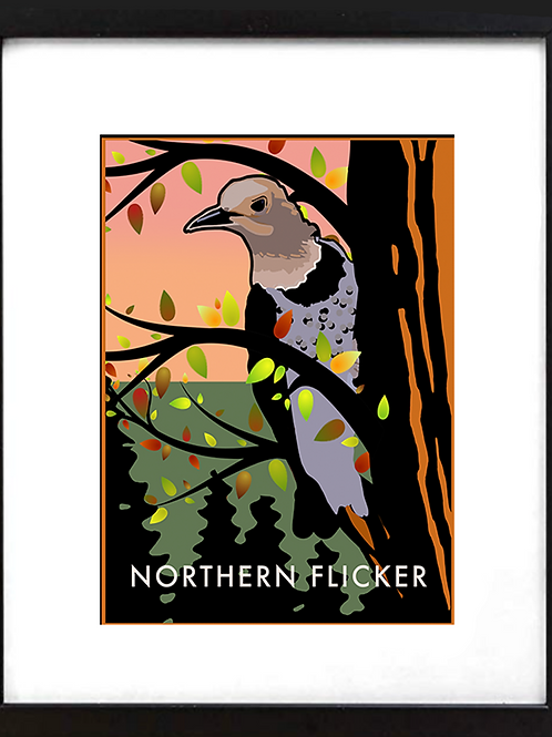 "Framed 11 x 14"" Northern Flicker"