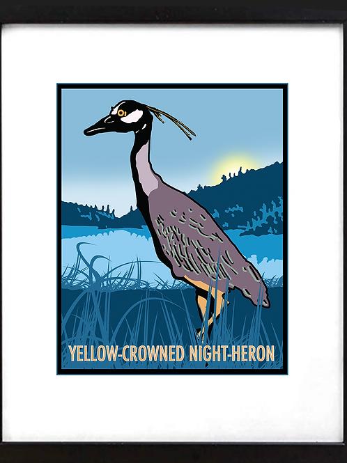 "Framed 11 x 14"" Yellow Crown Night Heron"