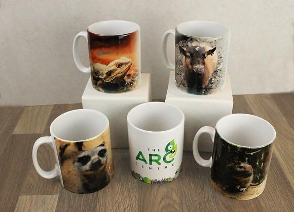 ARC Mug