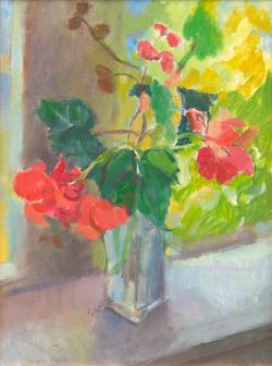 """""""Begonias on Porch"""""""