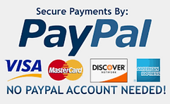 secure payments paypal logo