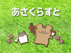 2019 8/9 fri- 8/14 wed  あさくらちさと個展「あさくらすと -名古屋編-」