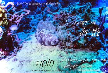 2018 1/26 fri - 1/28 sun  13:00-19:00  Masaru Ueda photo exhibition [海盛]