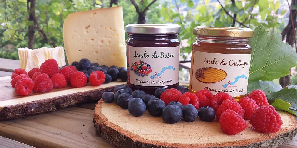 Autoraccolta e degustazione nel frutteto vista lago