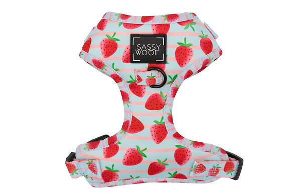 Sassy Woof - Adjustable Harness - I woof you berry much!