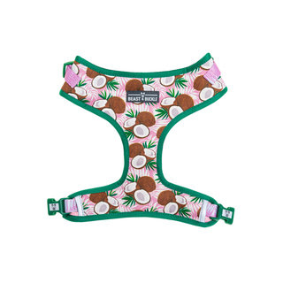BB - Adjustable Coconut Harness
