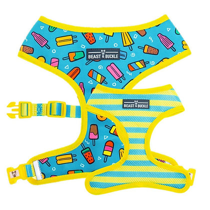 BB -  Popsicle Reversible Harness