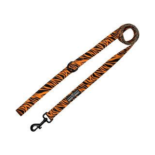 BB - Tiger Lead