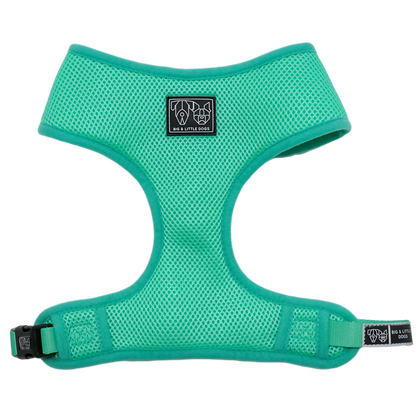 BLD Classic Harness - Teal