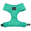 Thumbnail: BLD Classic Harness - Teal