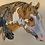 Thumbnail: Lynn Bean - Copper Paint Horse