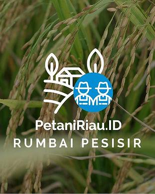 PetaniRiauID-Profil Tani-04.jpg