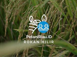 PetaniRiauID-Profil Tani-02.jpg