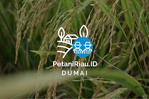 PetaniRiauID-Profil Tani-03.jpg