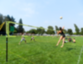 park-and-sun-sports_grass_volleyball.png