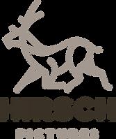 hirschp-logo-A1-light.png
