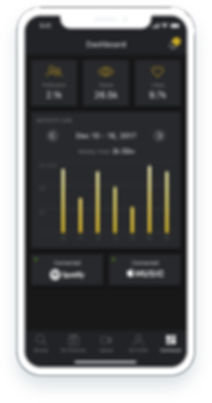 Design of the Dashboard feature on a phone.