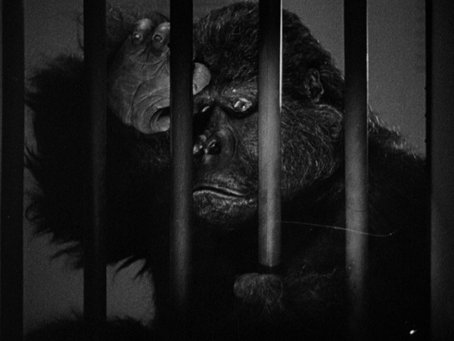 The Monster & the Girl  (1941)
