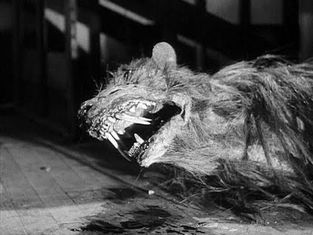 Countdown to Halloween: The Killer Shrews (1959)