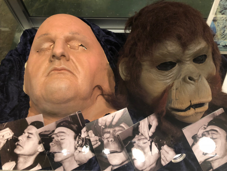 Beneath the Exhibit of the Planet of the Apes