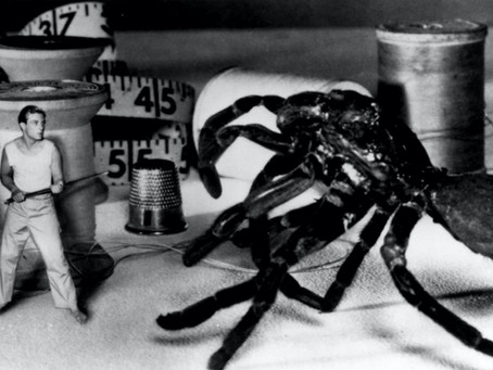 Review: The Incredible Shrinking Man (1957)