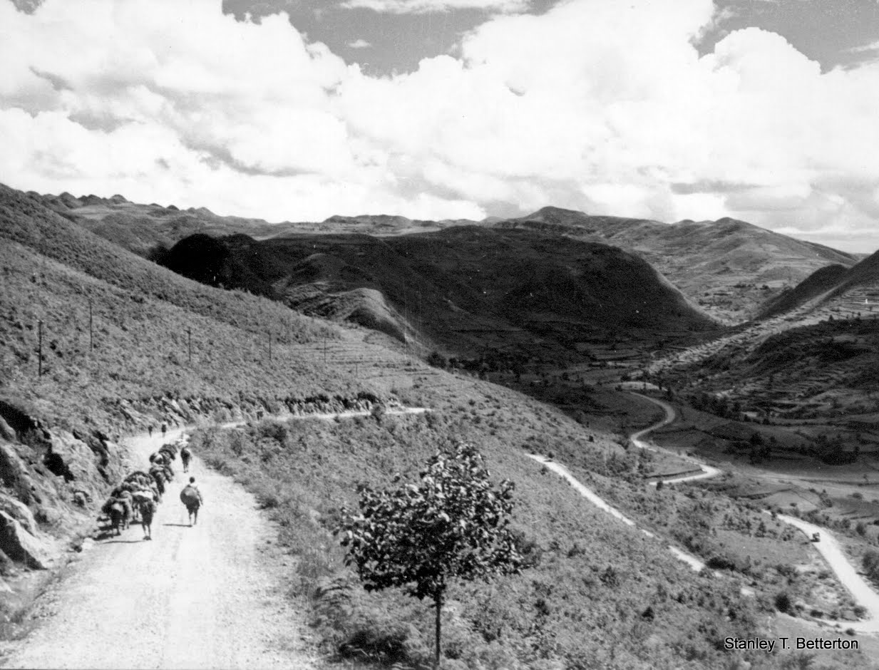 Mountain Road with Mule Train (china003)