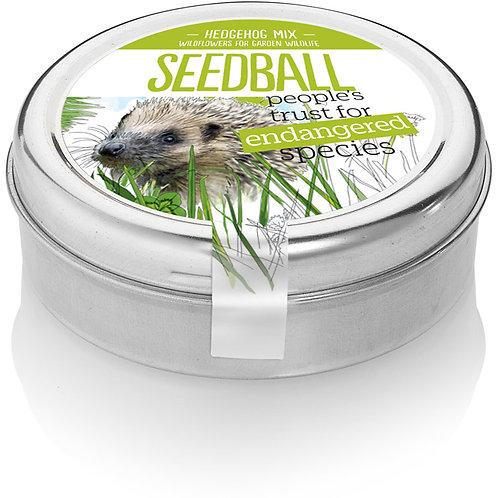 'Seedball' Hedgehog mix