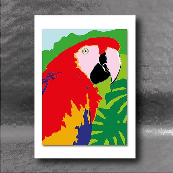 Mr Slater's Parrot Greetings Card
