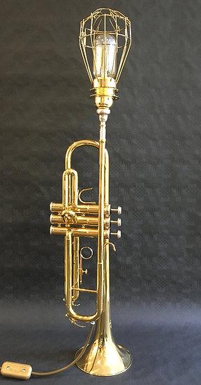 Stagg Brass Trumpet