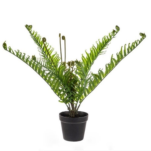 Potted Faux Fern 53cm