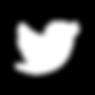 Twitter_Logo_WhiteOnImage-01.png